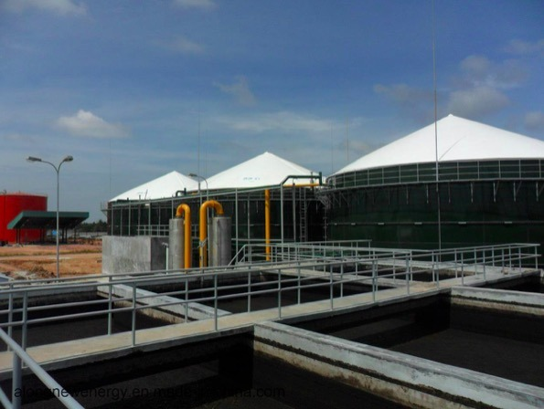 Biogas Plant Design/Offer/Construction/Operation for Animal Farm