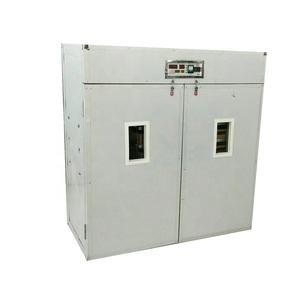 Electricity reptile baby mini incubators
