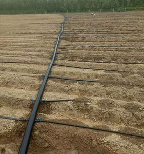 Drip Irrigation System Pipes Hoses For Greenhouse Farm